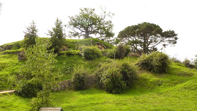The famous trees and Bilbo's house