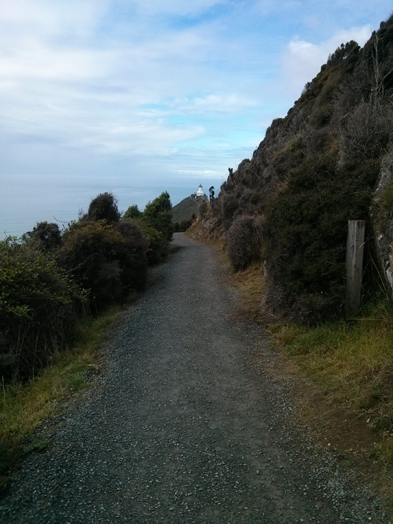 Nugget Point walking path