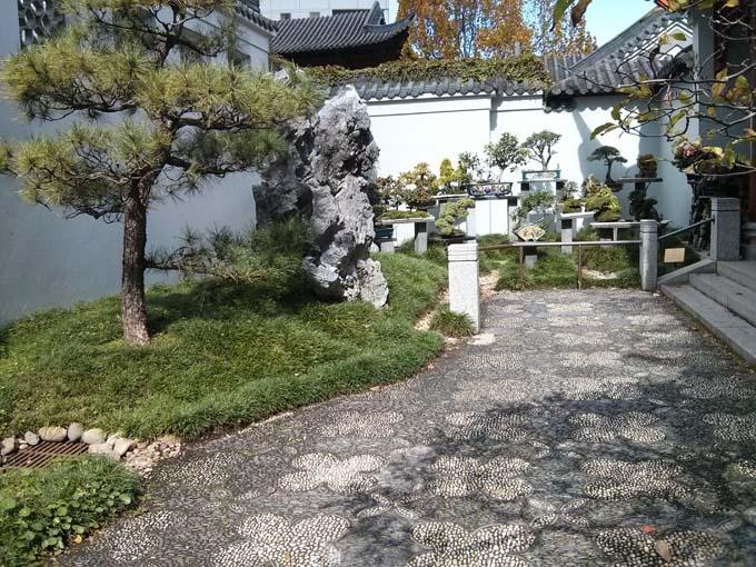 Chinese Garden-01