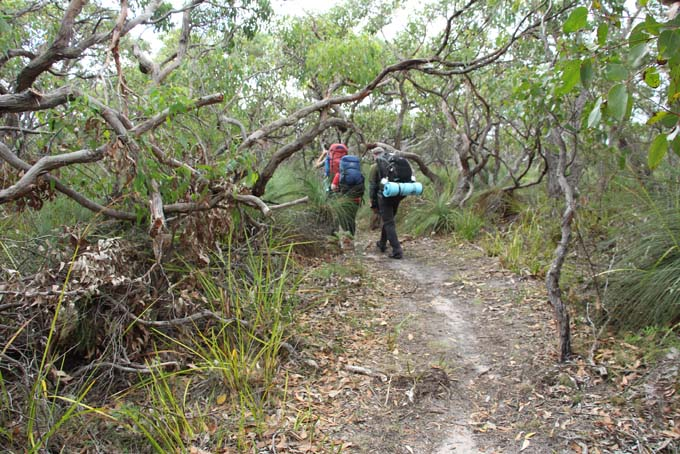 Johanna Beach hike path
