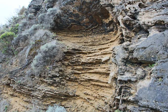 Ryan's Den hike path