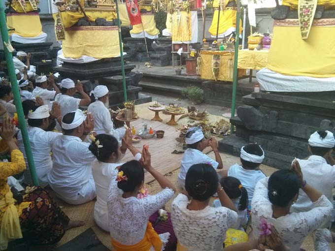 Bali-Galungan Festival Ceremony-04