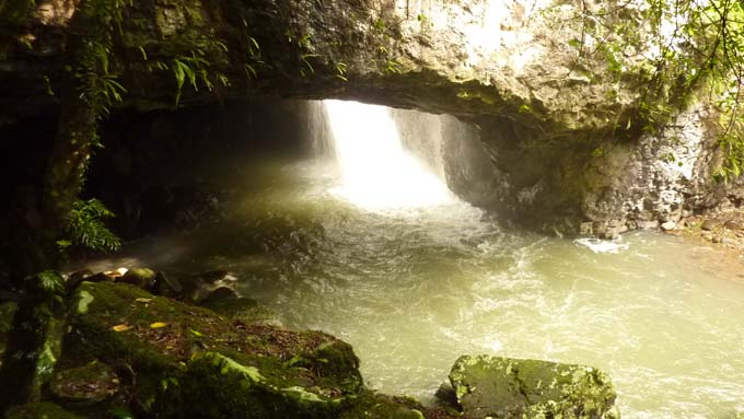 The space at the bottom of the waterfall contains a cave-like area for bats and glow worms.