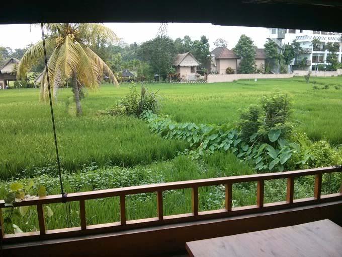 Bali-Ubud-Food-Breakfast View
