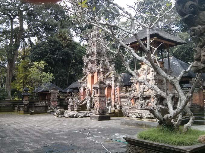 Bali-Ubud-Monkey Forest-53
