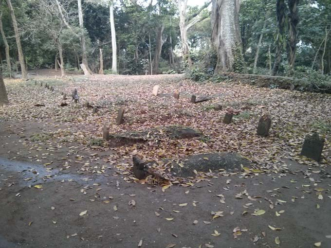 Bali-Ubud-Monkey Forest-78