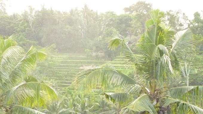 Indonesia-Bukit Jambul-01