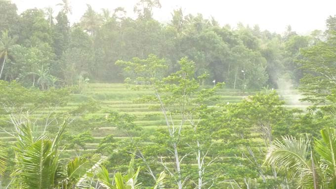 Indonesia-Bukit Jambul-02