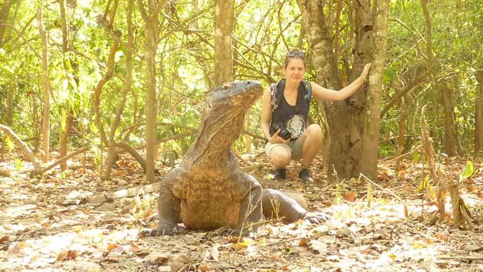 Creeping close to a Komodo Dragon