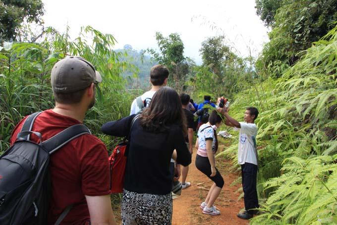 Indonesia-CH-05-Rafflesia Tour-Rafflesia