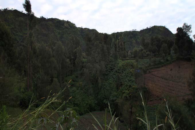 Indonesia-Mt Bromo-32