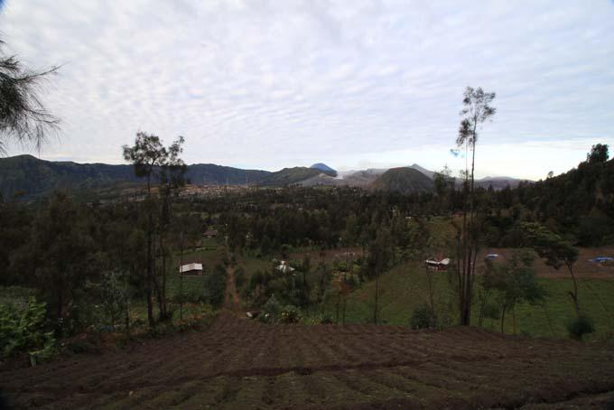 Indonesia-Mt Bromo-33