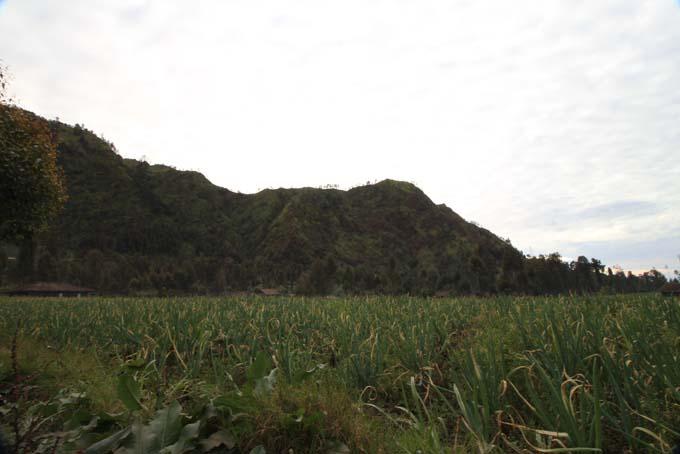 Indonesia-Mt Bromo-37