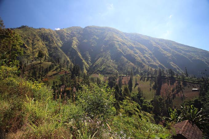 Indonesia-Mt Bromo-43