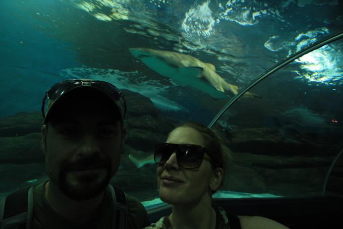 China-Aquarium-107