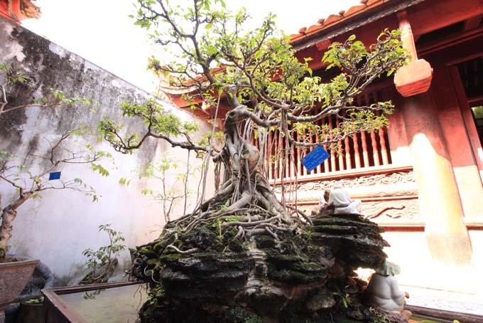 Hanoi-Temple of Literature-036