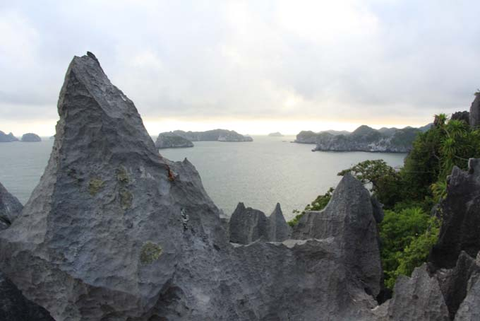 Vietnam-Cat Ba-Ha Long Tour-084