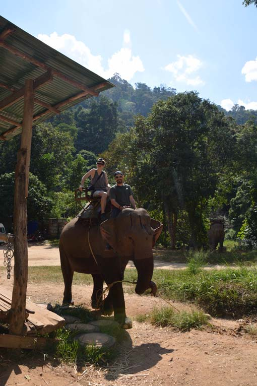 Chiang Mai-Elephant Riding-014