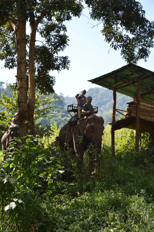 Chiang Mai-Elephant Riding-017