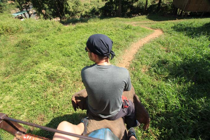 Chiang Mai-Elephant Riding-018