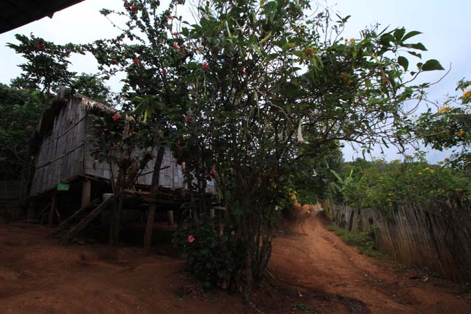 Chiang Mai-Trek-040