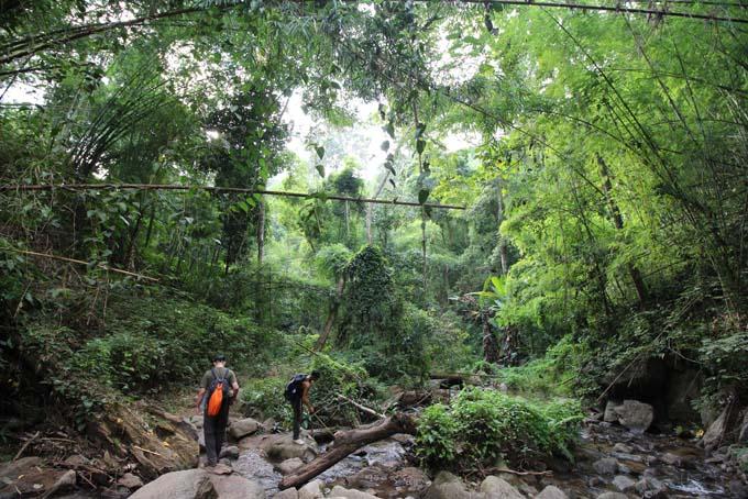 Chiang Mai-Trek-088