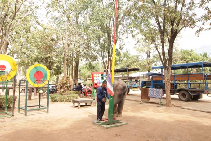 Taweechai Elephant Camp-01