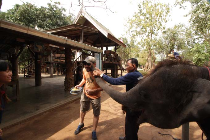 Taweechai Elephant Camp-03