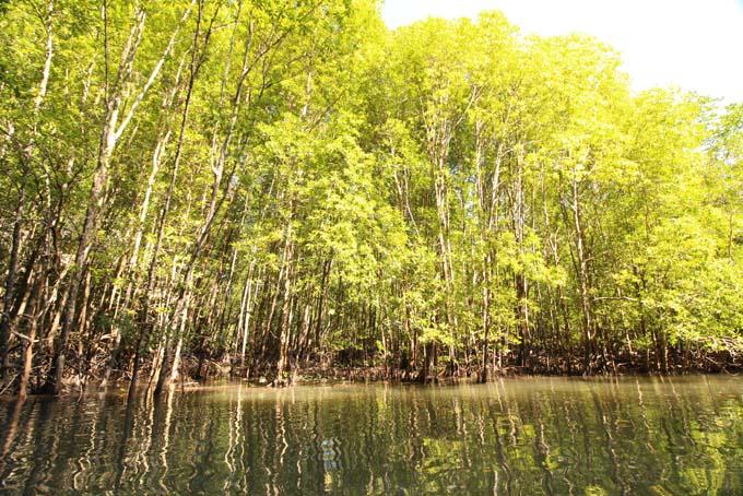 Ao Thalan Kayak-27
