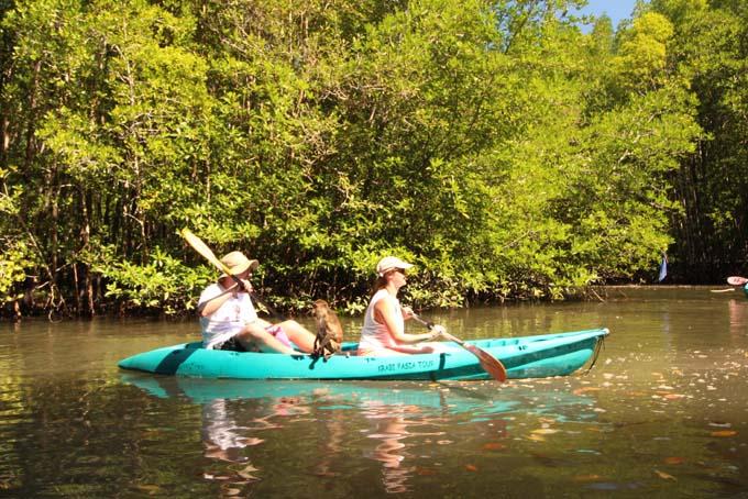 Ao Thalan Kayak-28