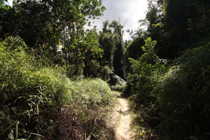 Waterfall Hike-06